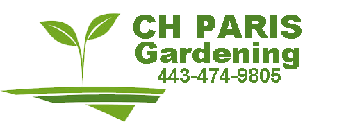 CH Paris Gardening